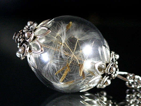 Real Dandelion Seeds antique style glass orb